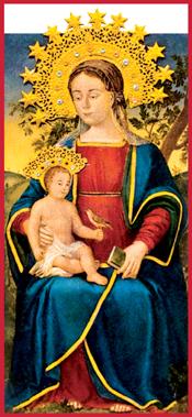 Santuario Madonna dell'Olmo